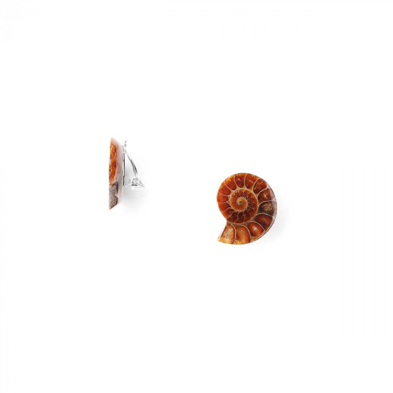 WABI SABI  *BO clips ammonite